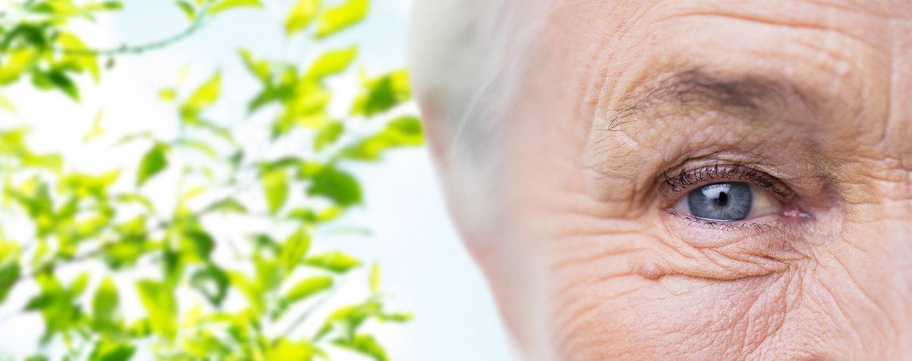 Altersbedingte Makuladegenertion
